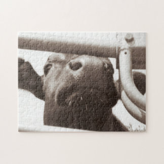 Nosey Cow Jigsaw Puzzle