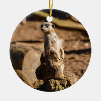 nosey meerkat christmas ornament
