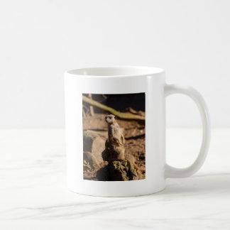 nosey meerkat coffee mug