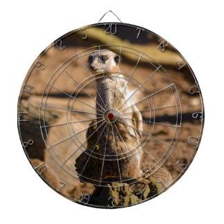 nosey meerkat dartboard