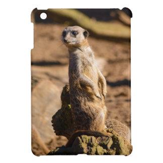 nosey meerkat iPad mini covers