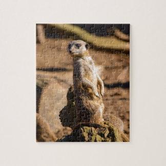 nosey meerkat jigsaw puzzle