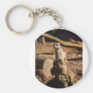 nosey meerkat key ring