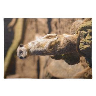 nosey meerkat placemat