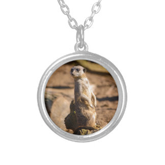 nosey meerkat silver plated necklace