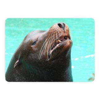 Nosey Sea Lion 5x7 Paper Invitation Card