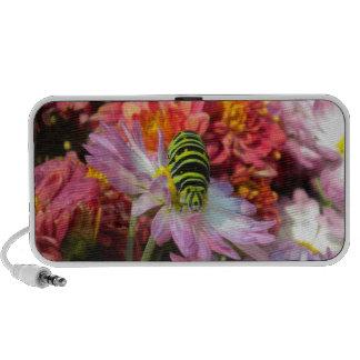 Nosy Caterpillar Doodle Speaker