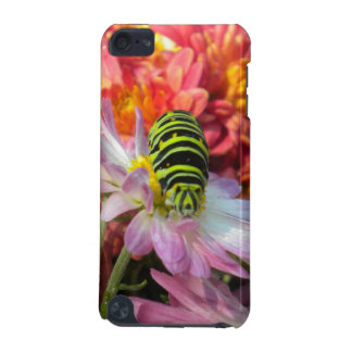 Nosy Caterpillar iPod Touch Case