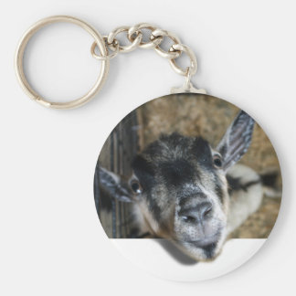 Nosy Goat Looking Out Basic Round Button Key Ring