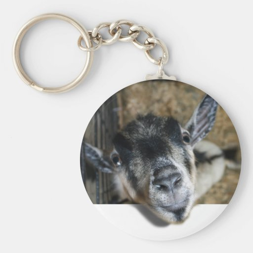 Nosy Goat Looking Out Keychain