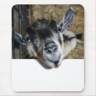 Nosy Goat Looking Out Mouse Pad