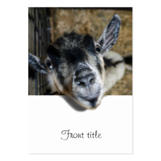 Nosy Goat Looking Out Pack Of Chubby Business Cards