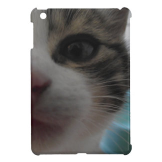 Nosy Kitten iPad Mini Cases