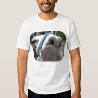 Nosy Llama T-shirt