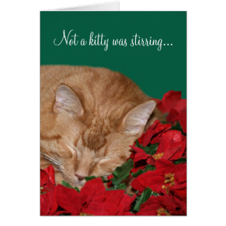 Not a kitty was stirring... greeting card
