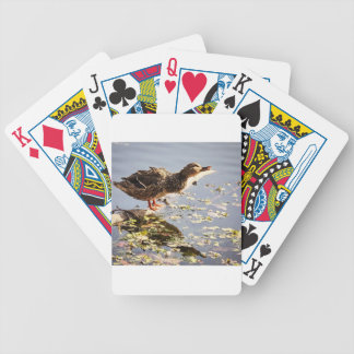 Not Duck Dynasty Bicycle Poker Cards