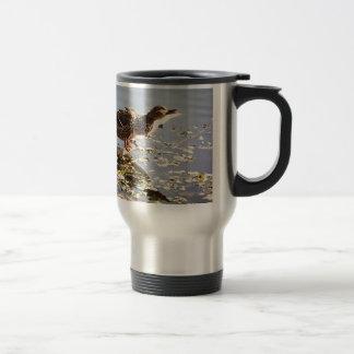 Not Duck Dynasty Coffee Mugs