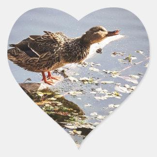 Not Duck Dynasty Sticker