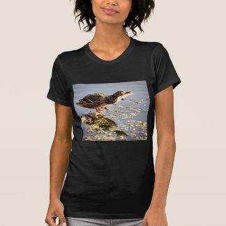 Not Duck Dynasty Tshirts