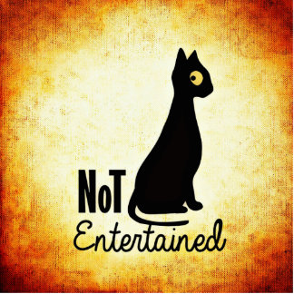 Not entertained sassy black cat button photo sculpture badge