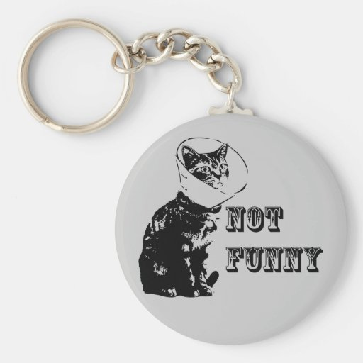 Not Funny Key Chain