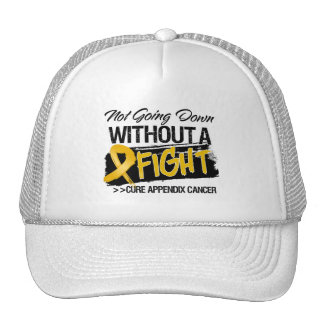 Not Going Down Without a Fight - Appendix Cancer Trucker Hat