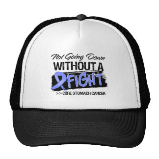 Not Going Down Without a Fight - Stomach Cancer Mesh Hat