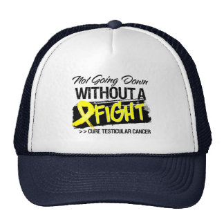 Not Going Down Without a Fight - Testicular Cancer Mesh Hats