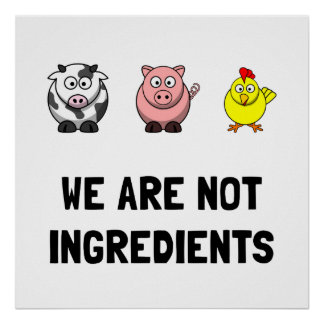 Not Ingredients Poster