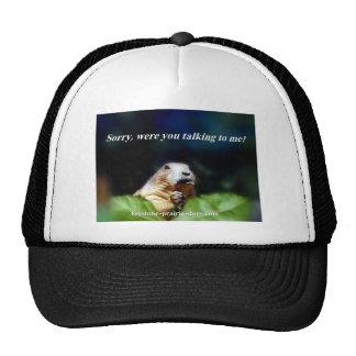 Not listening trucker hat