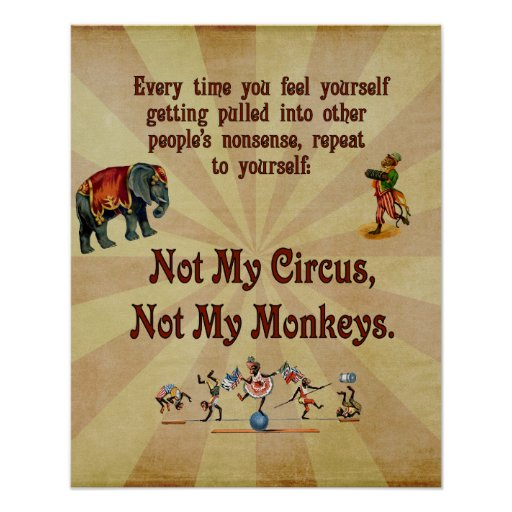 Not My Circus, Not My Monkeys Poster