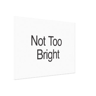 Not Too Bright Gallery Wrapped Canvas