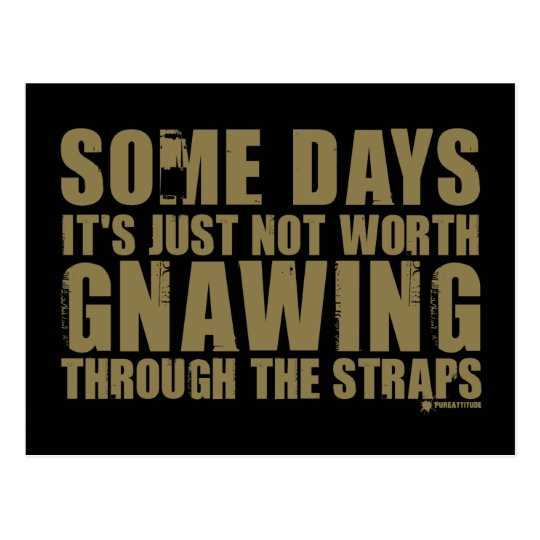 Not Worth Gnawing Through The Straps Postcard