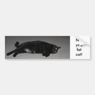 Not You Fat Cat! Bumper Sticker