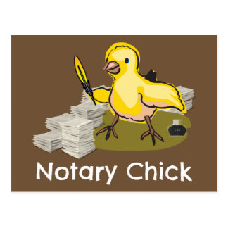 Notary Chick with Feather Quill and Documents Postcard