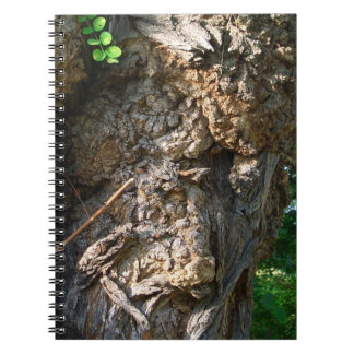 Note book tree