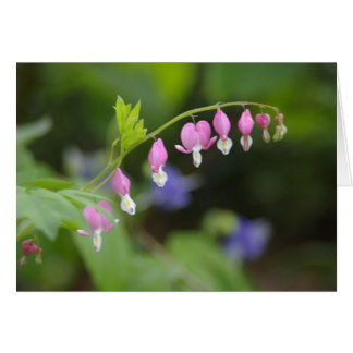 note card - pink flowers