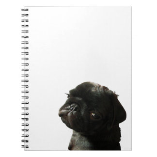 "Notebook ""Boris the Devil"""