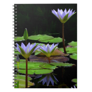 Notebook / Personal Journal - purple water lilies