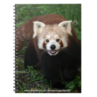 notebook - red panda