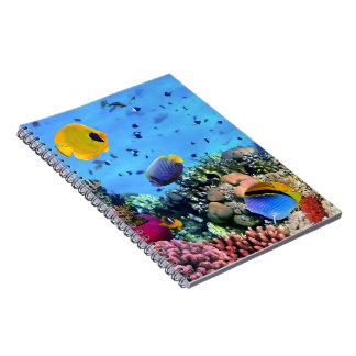 Notebook-Tropical Fish Notebooks