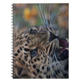 Notebook with cute roaring leopard