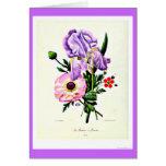 Notecard-Botanicals-Pierre Joseph Redoute 19 Greeting Card