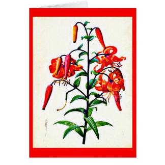 Notecard-Botanicals-Pierre Joseph Redoute 4 Note Card