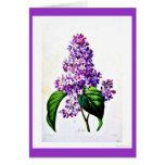 Notecard-Botanicals-Pierre Joseph Redoute 8 Card
