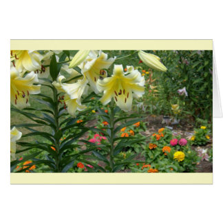 notecard, Colorful Mixed Floral Greeting Cards