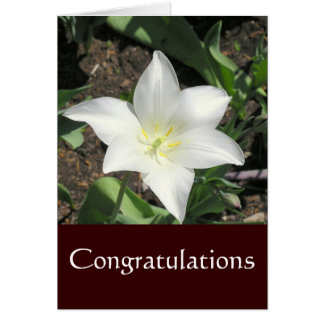 NOTECARD, CONGRATULATIONS, PHOTOGRAPHY, FLORAL NOTE CARD