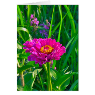 NOTECARD, FLORAL (PINK) NOTE CARD