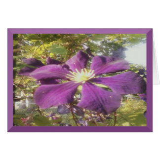 Notecard Passionate Purple Flower Greeting Card