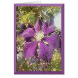 Notecard Passionate Purple Flower Greeting Card
